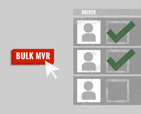 bulk mvr